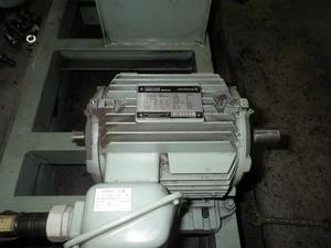 RIMG0337.JPG